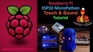 ESP32 MicroPython OLED Tutorial with ADC & FTP - PakVim net