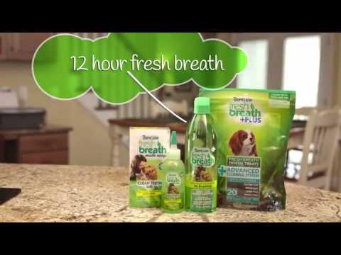 Clean Teeth. Fresh Breath. No Brushing! Tropiclean Pet Clean Teeth Gel, Review.