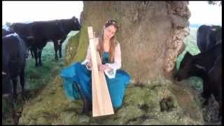 Hands on Harps Concert to Cows