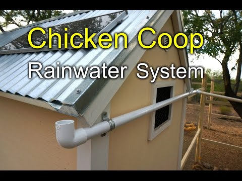 Chicken Coop Rainwater Harvesting System - How to