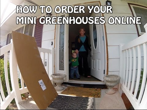 How To Order Your Miniature Greenhouses Online