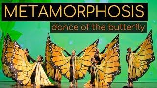 Metamorphosis (Butterfly Dance, Lahore Connection, Prem Joshua) | Kruti Dance Academy