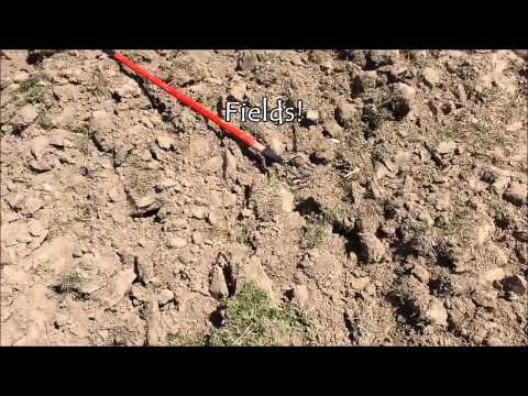 Arrowhead Hunting - Missouri - Kayaking - Morel Mushrooms