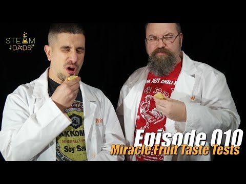 STEAMDads - Episode - Miracle Berry CHALLENGE!!