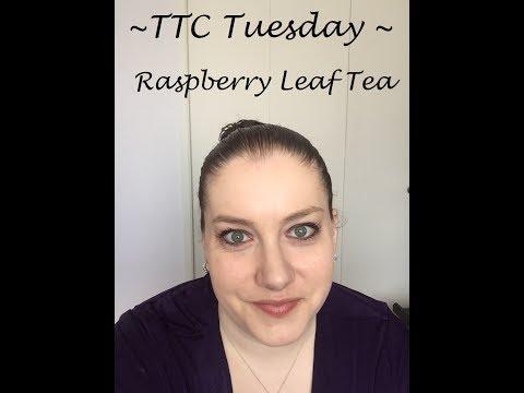 TTC Tuesday - Raspberry Leaf Tea