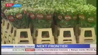 The Journey Of Kenyan Flowers To Europe   Next Frontier