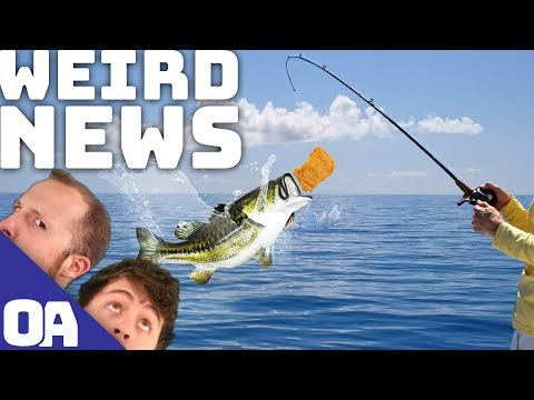 CATCHING FISH WITH CHICKEN NUGGETS!?