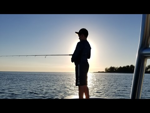 Fishing for Tripletail,Trout & Redfish Sarasota to Tampa Bay. 10/16/2017