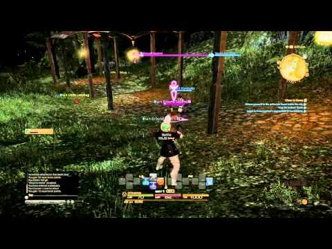 Final Fantasy XIV A Realm Reborn PS4 Beta combat footage