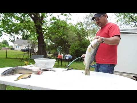 Cleaning Bass with Dwayne