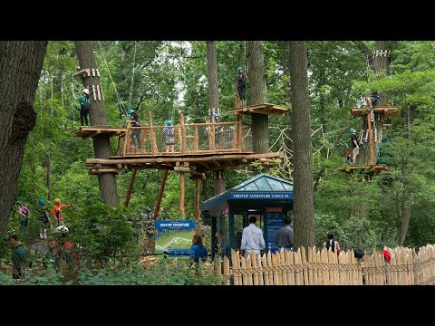 Get Going: The Bronx Zoo's Treetop Adventure