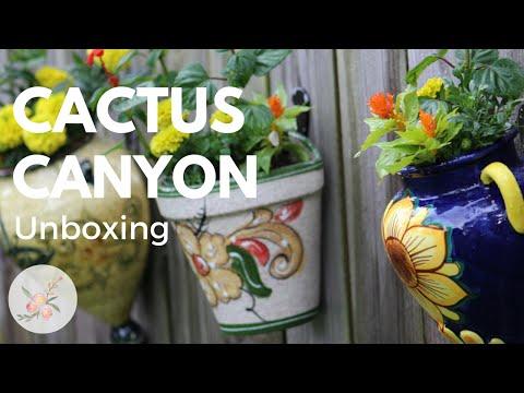 Unboxing: Cactus Canyon Ceramics - Wall Hanging Planters