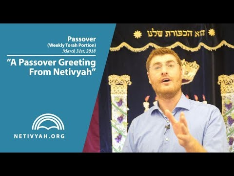 A Passover Greeting From Netivyah