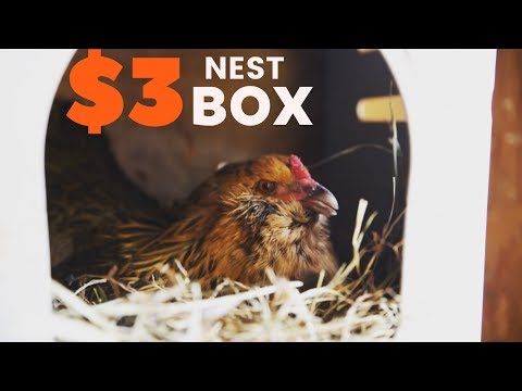 How To Make a Chicken Nest Box for $3