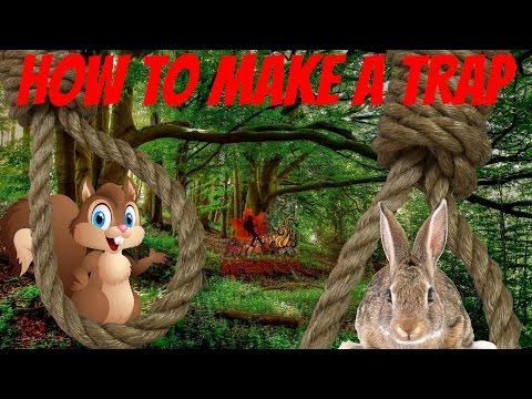 HOW TO MAKE A TRAP.  ( SQUIRREL / RABBIT )