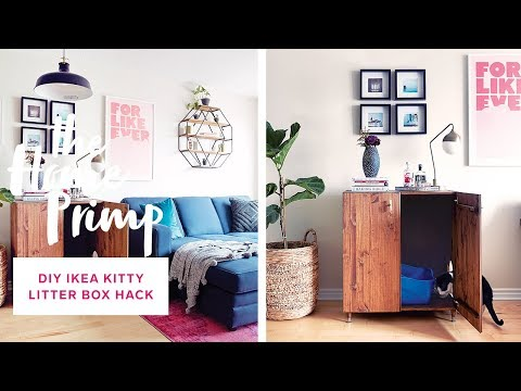 Tiny Condo Living/Dining Makeover For Under $300 | DIY Ikea Kitty Litter Box Hack | The Home Primp