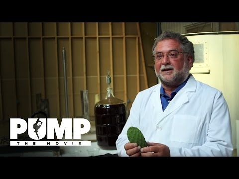 Many Plants Can Be Made Into Alcohol Fuel