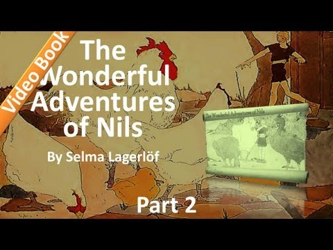 Part 2 - The Wonderful Adventures of Nils Audiobook by Selma Lagerlöf (12-22)