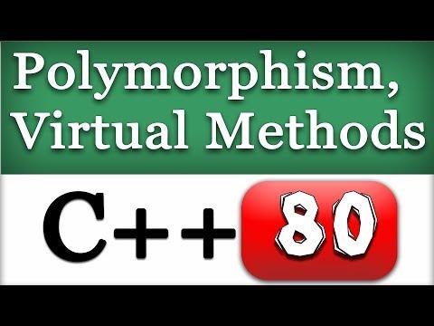 Polymorphism in C++ and Virtual Functions / Methods | CPP Video Tutorial