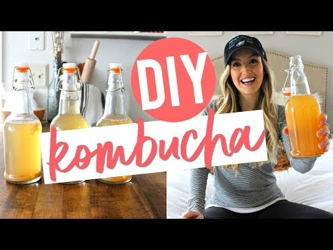 HOW TO MAKE YOUR OWN KOMBUCHA | Easy & Affordable!