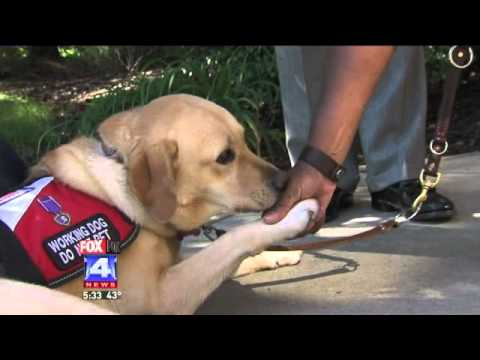 Service Dog Helps Veteran with PTSD