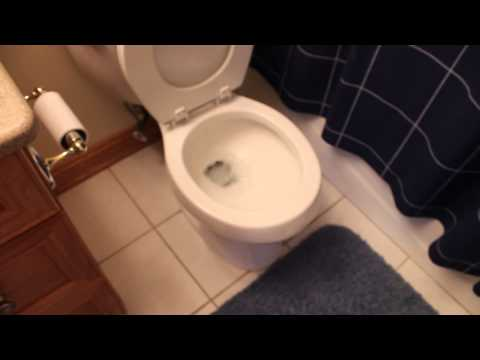 Waterproof your Iphone 6 and Iphone 6 Plus | #5 | iPhone 6 Water Test in Toilet Bowl