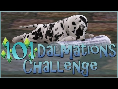 Return of the Spotted Puppies!! || Sims 3: 101 Dalmatians Challenge  - Episode #63