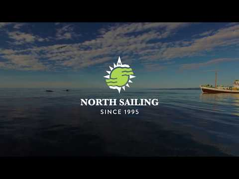 Whale Watching Húsavík Iceland with North Sailing