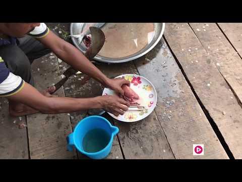 Maowa Ghat   Hilsha Fish   মাওয়া ঘাট   ইলিশ মাছ