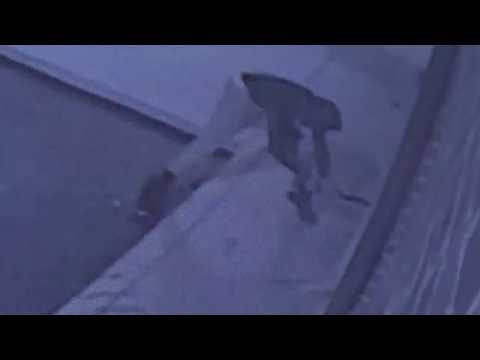 Burglar hammers through brick wall to steal prescription drugs