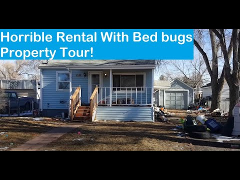 Rental Property Number 10 After a Tenant Eviction and Bed Bugs!