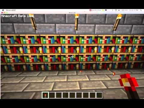 Minecraft Secret Bookshelf Door
