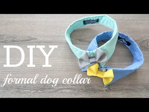 DIY #3- Formal Dog Collar & Call for COLLAB!!!