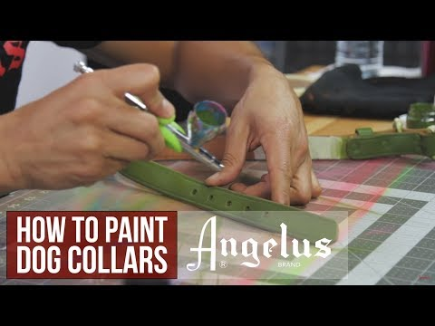 Custom Leather Dog Collar | Angelus Leather Paints
