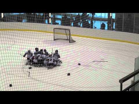 SWAT RENEGADES TIER 2 -WINNING GOAL -  MINOR HOCKEY WEEK 2012