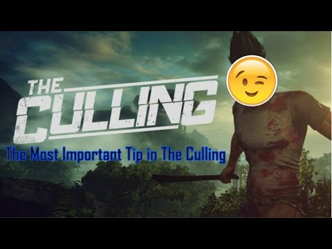 How to Change Inventory Slots on The Culling | Xbox, PlayStation, PC