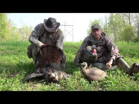 2017 West Virginia Turkey Hunt