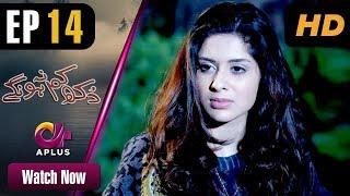 Dukh Kam Na Honge - Episode 14 | Aplus Dramas | Saba Faisal, Nadia Afghan, Babar | Pakistani Drama