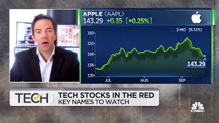 How to play the tech sector in today's market