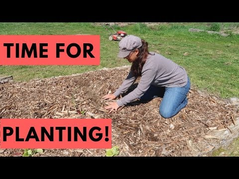 BIG Planting Day!