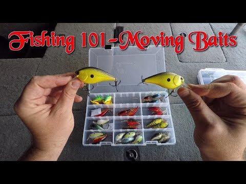 Bass Fishing 101 Moving Baits