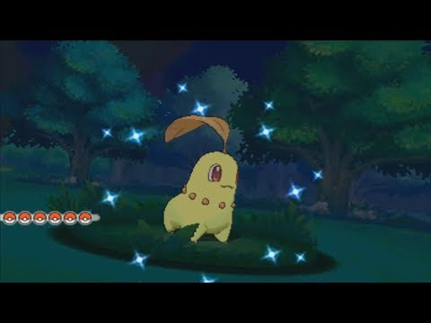 LIVE! Shiny Chikorita in ORAS from Professor Birch after 3,320 SR's (+Evolutions)