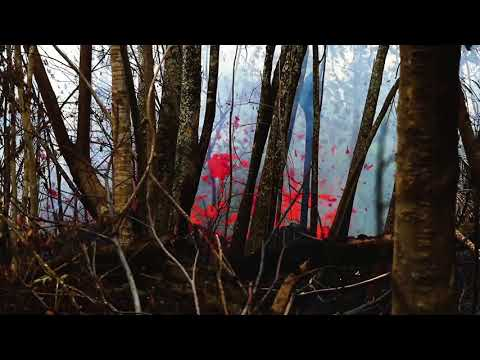 Hawaii volcano: Kilauea lava, ash 2018