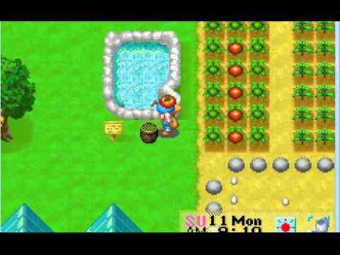 Harvest Moon FoMT My Farm