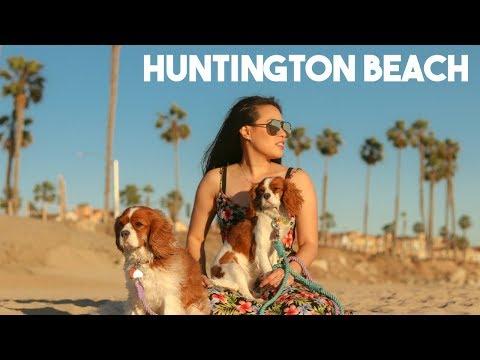 Huntington Beach Dog Beach | Dog Friendly Los Angeles California