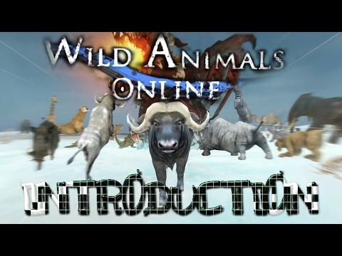 Wild Animals Online Game Introduction