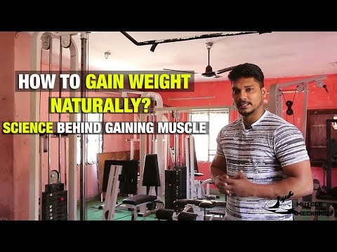 BASICS of Gaining Muscle | WEIGHT GAIN Explanation in Tamil
