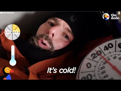 Vet Stays in Freezing Dog House To Show What It's Like For a Dog | The Dodo