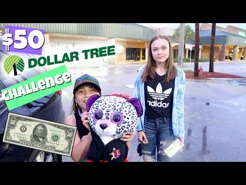 $50 DOLLAR TREE SHOPPING CHALLENGE!