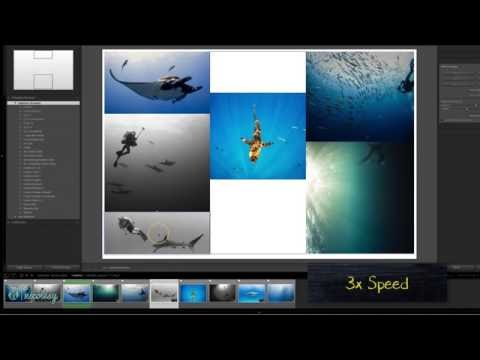 Making a Custom Collage in Lightroom